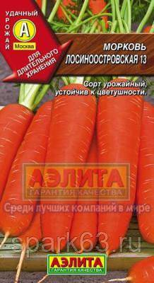 Морковь лосиноостровская 13: описание сорта и особенности выращивания