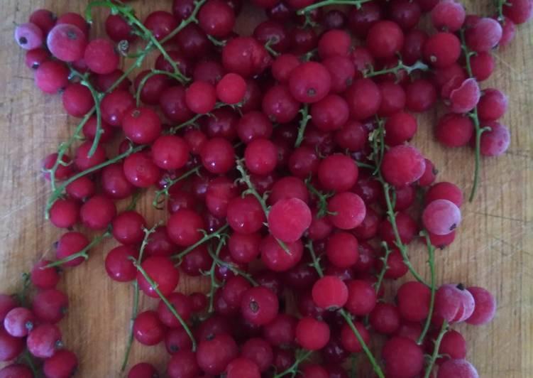 Смородина красная татьяна: фото и описание сорта, отзывы о нем