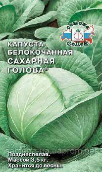 Описание поздних сортов капусты сахарная голова, колобок, атрия, валентина и другие