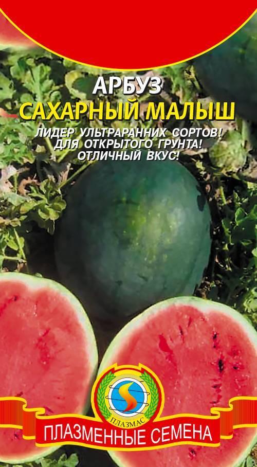 Описание и характеристика сорта арбуза астраханский