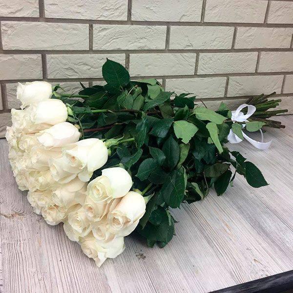Самые красивые сорта белых роз для вашей усадьбы