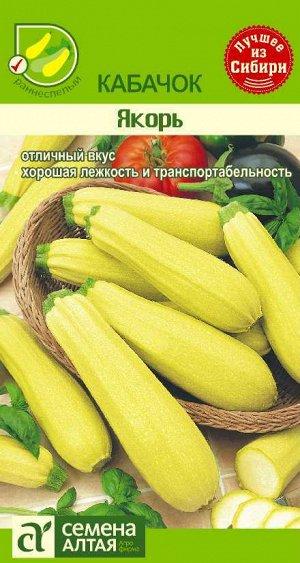 Кабачки - сорта, выращивание, подготовка семян и уход