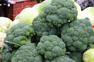 Лучшие сорта капусты | красивый дом и сад