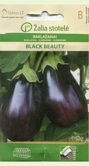 Баклажан черный красавец: описание сорта, фото, посадка, уход, отзывы