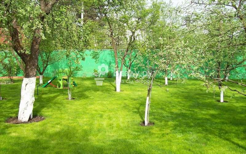 Борьба с вредителями сада весной