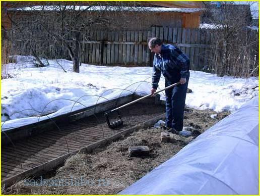 Март – работы в саду