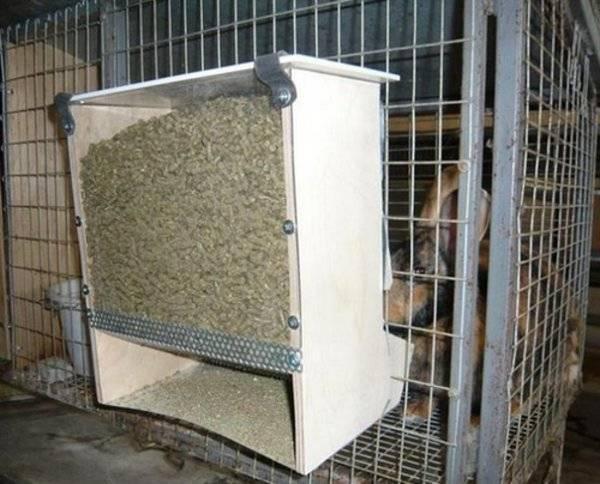 Сенник для кроликов: подробная пошаговая инструкция по созданию клетки для кроликов