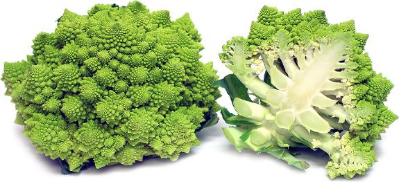 Полезные свойства и выращивание римской капусты романеско