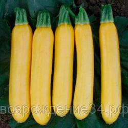 О семенах кабачков разного сорта: в чем разница, как проверить семена на всхожесть