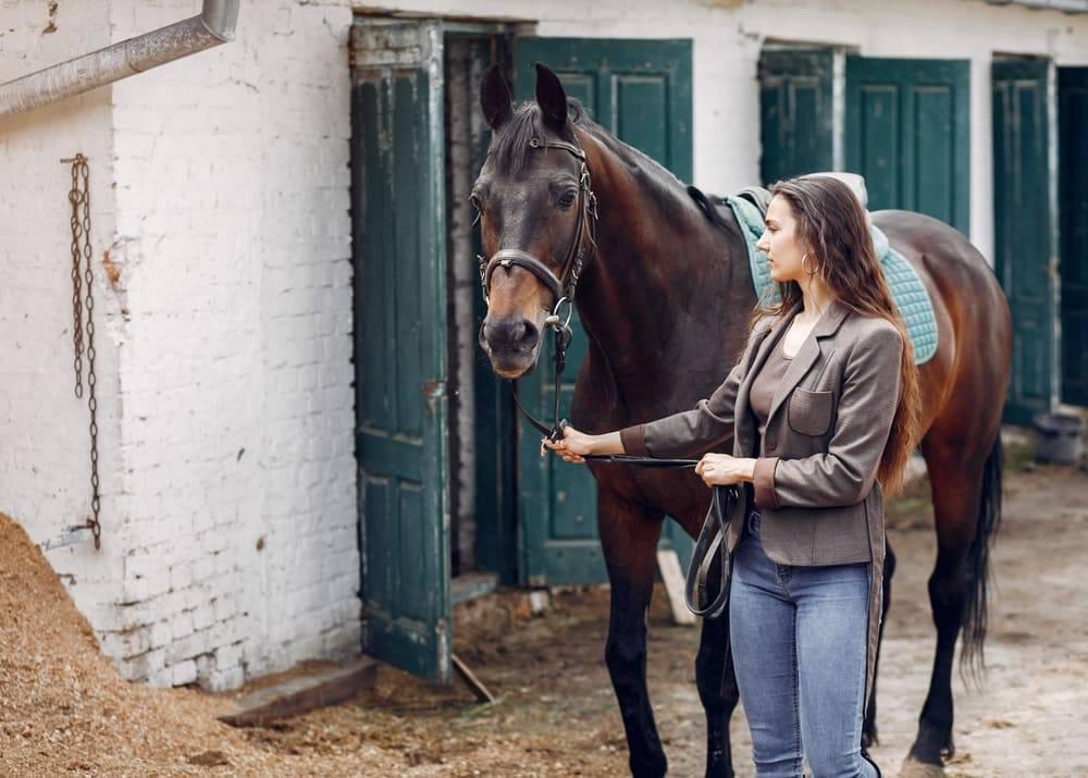 Сколько стоит содержание лошади в месяц