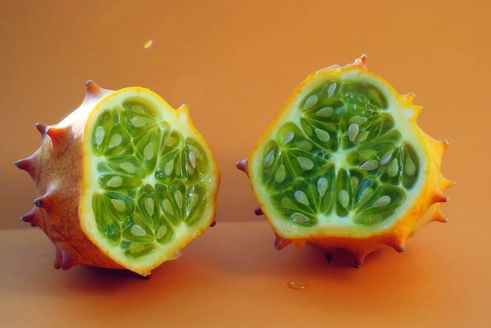 Необычные огурцы — экзотика жарких стран на обеденном столе