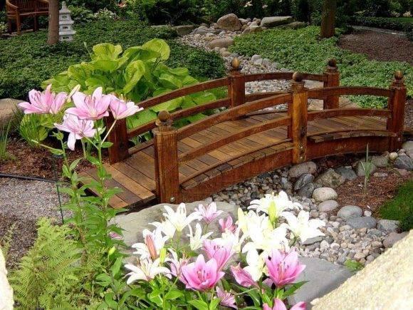Посадка и выращивание лилий