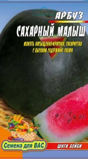 Выращивание арбузов в открытом грунте: пошаговая инструкция
