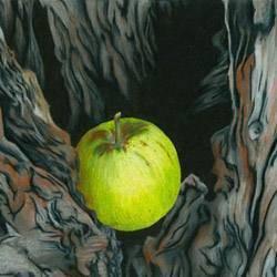 Чем замазать дупло в яблоне
