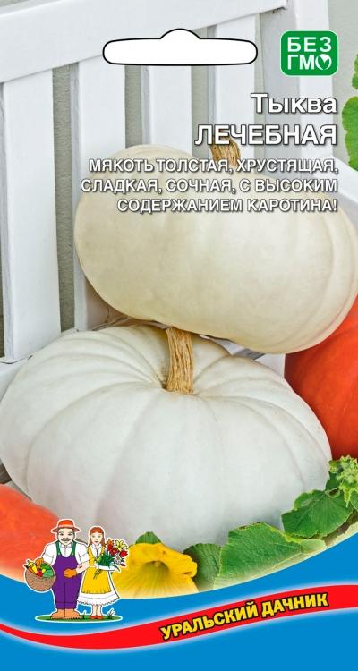 Все о тыкве Лечебной: как выглядит, описание сорта, секреты выращивания