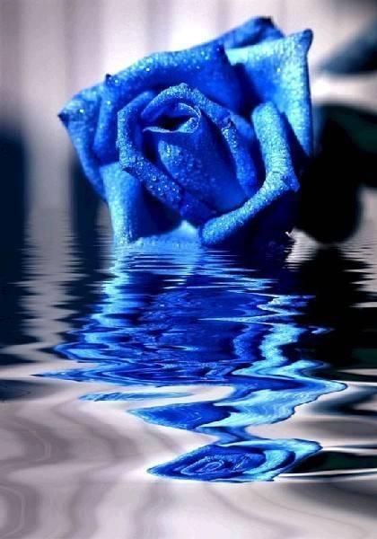 «голубая рапсодия»