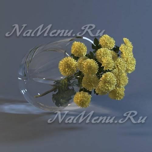 Как сохранить срезанные хризантемы в вазе подольше. как реанимировать цветы. которые начали подсыхать (+отзывы)