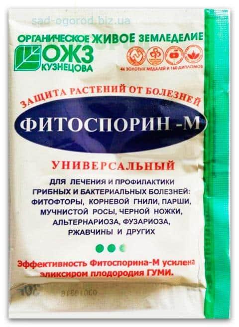 Фитоспорин для клубники: инструкция по применению, советы когда и как применять препарат (100 фото)