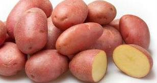 Лучшие сорта картофеля с описанием и фото