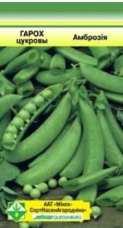 Выращивание гороха: посадка и уход в открытом грунте