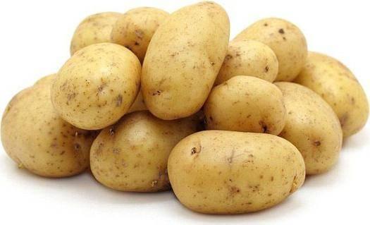 Сорт картофеля наташа: характеристика сорта, описание и его особенности