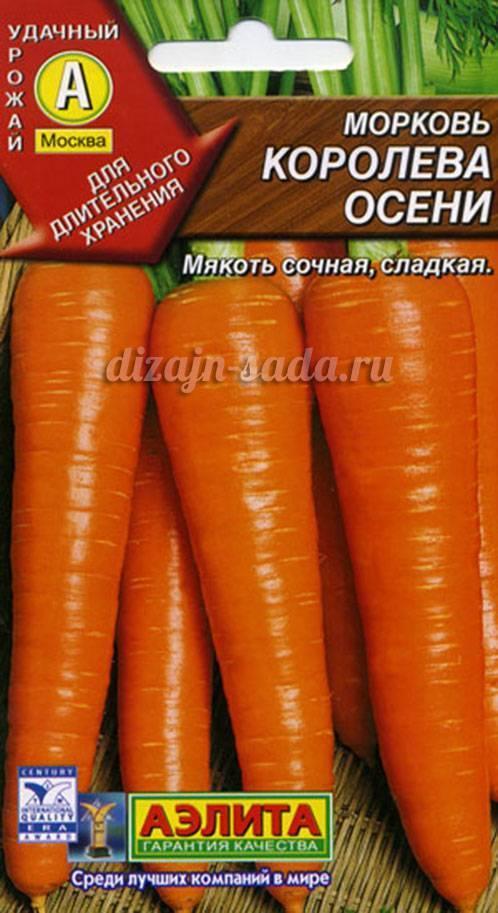 Морковь «королева осени»: отзывы, фото, урожайность, описание и характеристика сорта