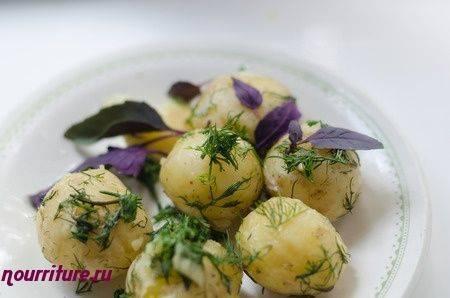 Сорт картофеля «елизавета»: характеристика, описание, урожайность, отзывы и фото