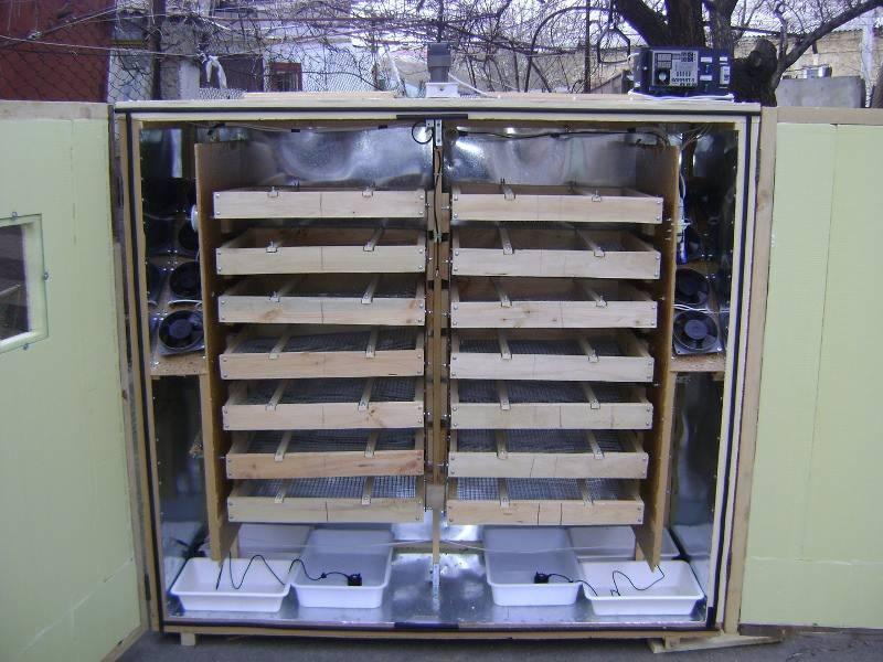 Самодельный инкубатор своими руками: схема, чертежи. как сделать самодельный инкубатор?