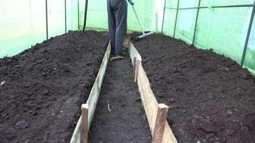 Необходимая влажность почвы для огурцов