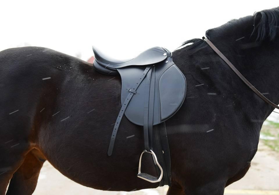 Амуниция для лошадей и всадников