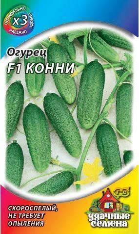 Особенности выращивания огурцов, сорт «конни f1»
