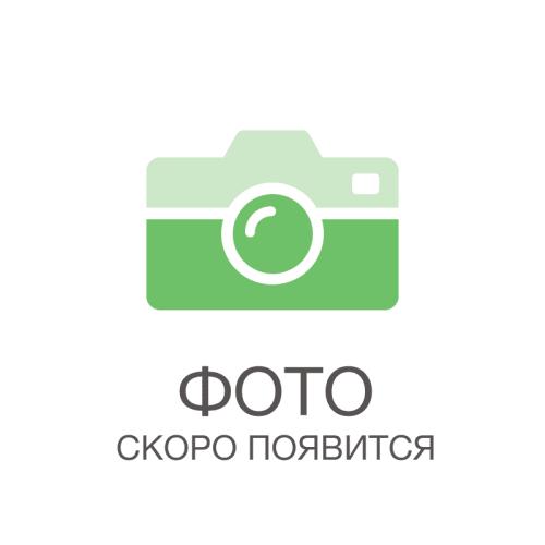 Описание сорта московское зимнее