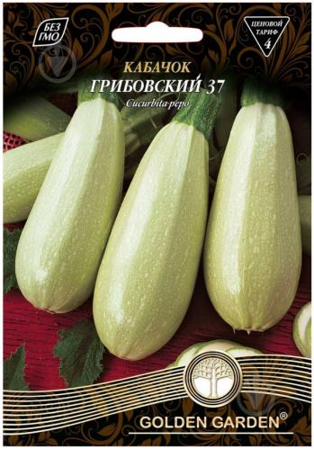 Самый урожайный сорт кабачков для открытого грунта
