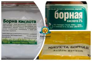 Борная кислота: применение в саду, огороде и цветнике