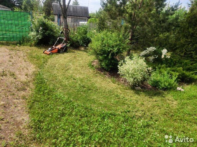 Весенняя обрезка кустарников