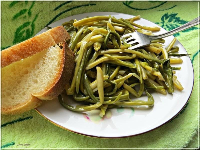 Черемша - что это такое, полезные свойства и вкусные блюда с ростками