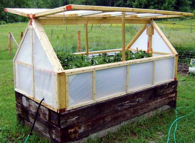 """Парник """"кабачок"""": под поликарбонатом его крыши можно получить богатый урожай"""