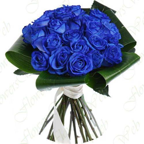 Изумительные синие розы — фото, описание, подробная инструкция, как самостоятельно вырастить или покрасить