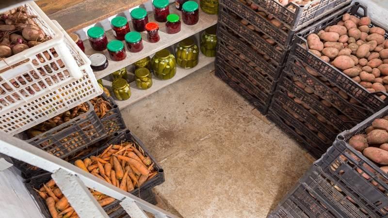Как хранить картофель дома – оптимальные условия + выбор емкостей для хранения
