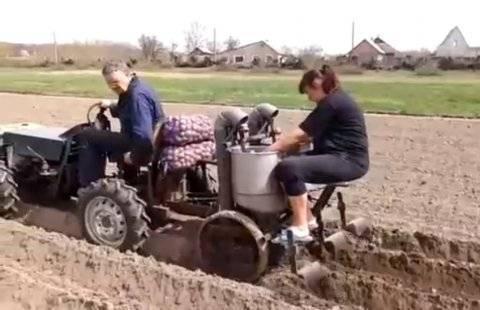 Как сажать картошку мотоблоком - идеально для тех, кто бережет свои силы и здоровье. | красивый дом и сад