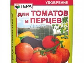 Не знаете, чем подкормить помидоры после высадки в грунт? опытные огородники раскрывают все свои секреты!