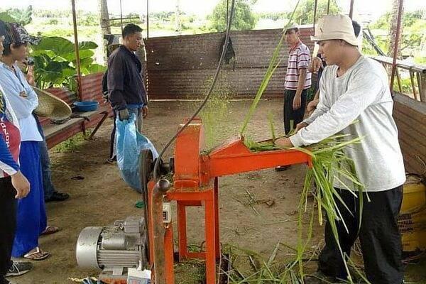 Об измельчителе веток садовом электрическом: как выбрать, рейтинг лучших