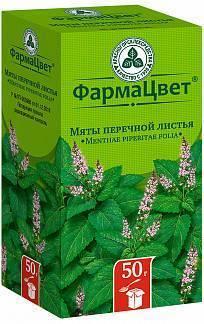 Мята перечная – свойства, применение масла и настойки