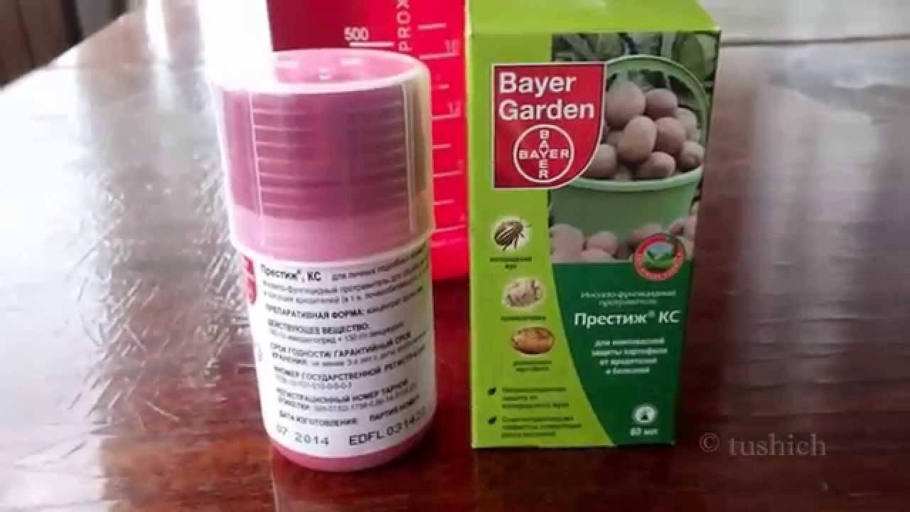 Престиж: как пользоваться протравителем картофеля, инструкция
